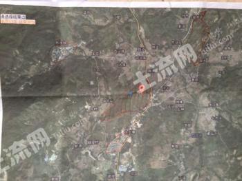 惠州龙门县1137亩林业用地出售