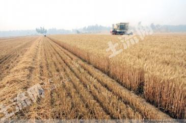 生态农场寻求合作伙伴