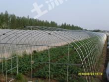 鄂州鄂城区 50亩 设施农用地 出租28号地
