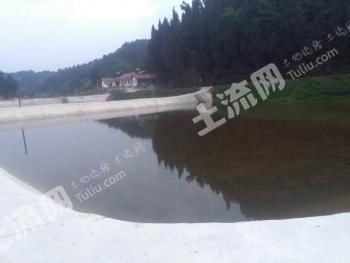 中国射洪硅化木公园1km处50亩鱼塘参股/转包