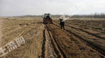 内蒙古乌兰察布一等农田转包出租
