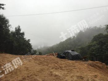 广东省韶关市新丰县马头镇4450亩林地转让