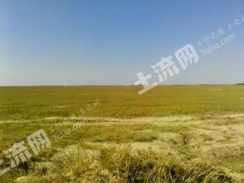 内蒙古科左中旗10000亩草原转让