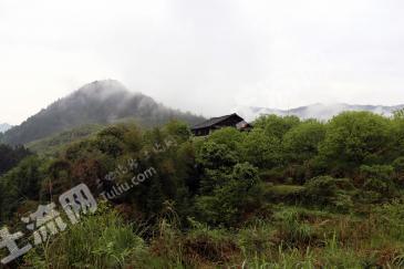 柳州三江侗族自治县 102亩 其它园地 转包