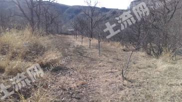 N06三河市东北紧邻平谷1800亩山地出售