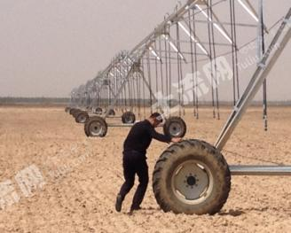 转让1800亩水浇地