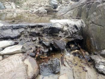 内乡县夏馆镇35000亩林地对外流转