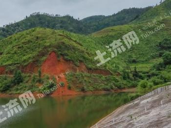 瑞金靠于都2000亩优质山林转让。