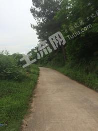 肇庆市怀集县1800亩矮山坡地出租