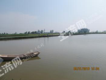 鄂州鄂城区 200亩 坑塘水面 出租61号地