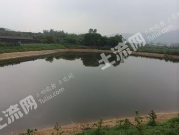肇庆市四会威整镇80亩农场/鱼塘转让
