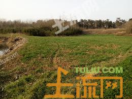 XC3襄阳市襄城区卧龙镇30亩旱地出租