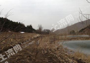 辽宁省铁岭开发区山地(林地)转包