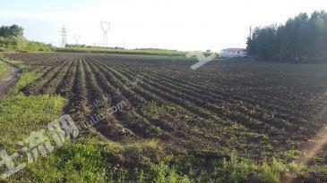 农业设施用地转让