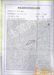 云南德宏盈江县37.5亩林地转让