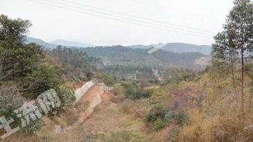 清远市清城区80亩山坡地(养生农场)转让