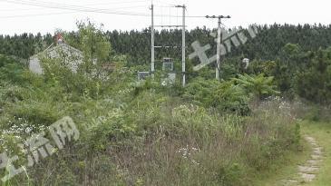 270亩林地和10亩厂房屠宰场转让
