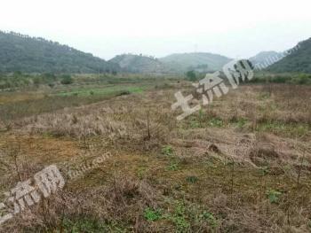转让清远市2000亩种养农场用地