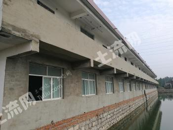 8亩精致鱼塘配房屋对外整体出售