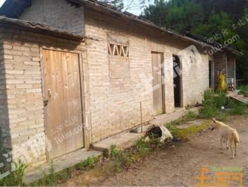 梅州市五华县500亩(生态农场)出租/转让