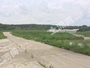 吉林市三家子110亩 农业用地转让