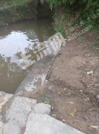 池州青阳县  Qh02-2 60亩 水田 转让