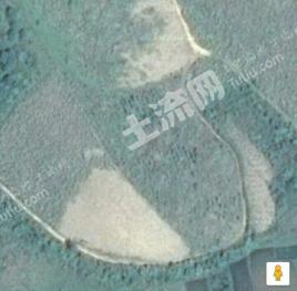 租赁30亩旱地