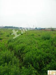 XZ11襄阳市高新区米庄镇100亩工业用地出租