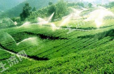 赤壁市生态家庭农场寻求开发商或合作伙伴