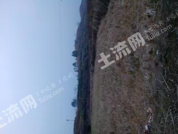 怀化溆浦一千亩土地合作