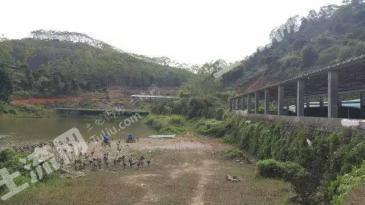 广东广州 120亩 鱼塘农场 出租