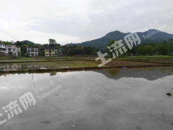 <荐>四川广安 300亩 水田