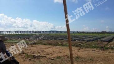 珠海市65亩生态种植基地低价转让