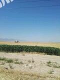 新疆伊犁察县3000亩农业用地出租2016296
