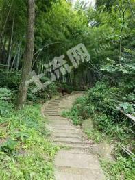 九华山附近硒谷旅游度假景区整体低价转让或者合作开发