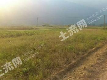 广东清远 200亩 旱地 出租