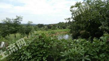 绵阳游仙区 40亩 其它工业用地 转让