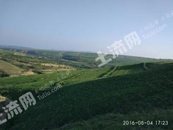 赤峰敖汉旗 320亩 养殖用地 转让