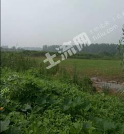 南京六合区 512亩 设施农用地 转让