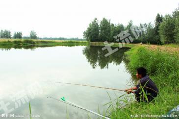 新疆石河子市 160亩 坑塘水面 转让