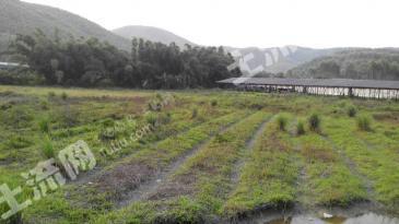 惠州市博罗县福田镇 20亩 养殖场地低价 转让