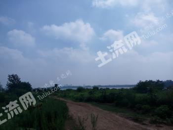 安徽第一宝地---- 3000亩 农场 转让合作