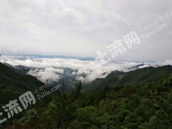 浙江省括苍山中药养生休闲度假基地 2000亩寻求合作共赢