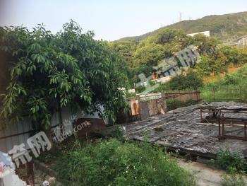 深圳龙岗区 45000平米 农村宅基地 入股