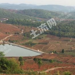 郴州桂阳县 800亩 旱地 合作