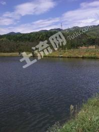 吉安遂川县 550亩 养殖用地 转让(238)