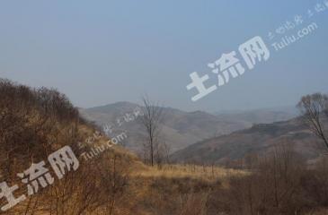 九江都昌县 198亩 灌木林地 转让