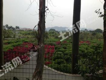 广州白云区 430亩 工业用地 转让