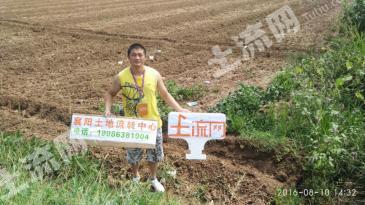 XZ6襄阳市襄州区龙王镇800亩旱地出租