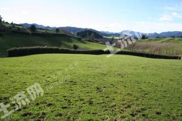 新西兰 风景如画的农场用地 1145836497